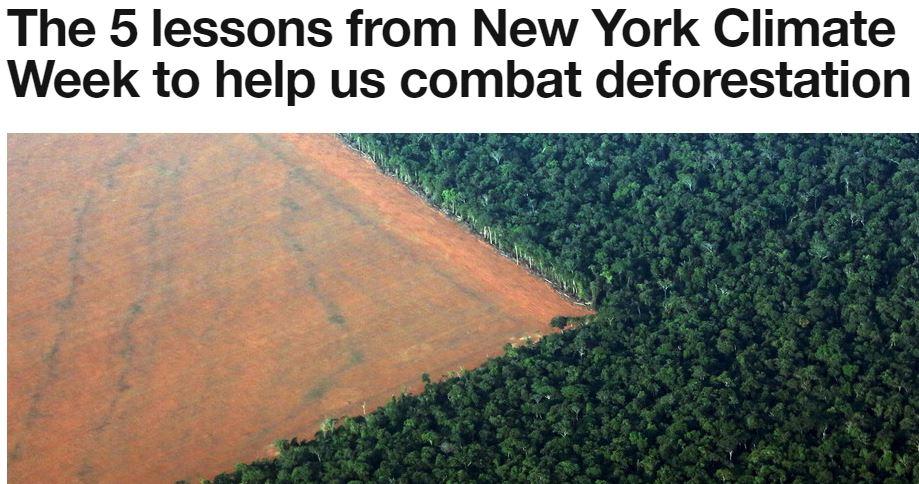 Les 5 leçons de la semaine du climat à New York pour nous aider à lutter contre la déforestation