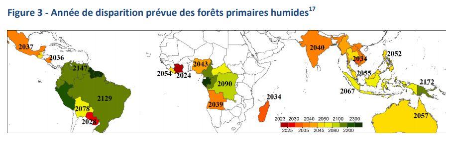 Les 5 priorités pour renforcer l'action de l'Union contre la déforestation et la dégradation des forêts