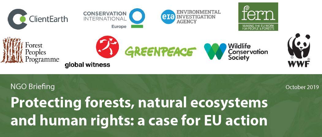 Un groupe de 9 ONG réalise une communication suite aux actions de renforcement de l'UE en matière de protection et de restauration des forêts