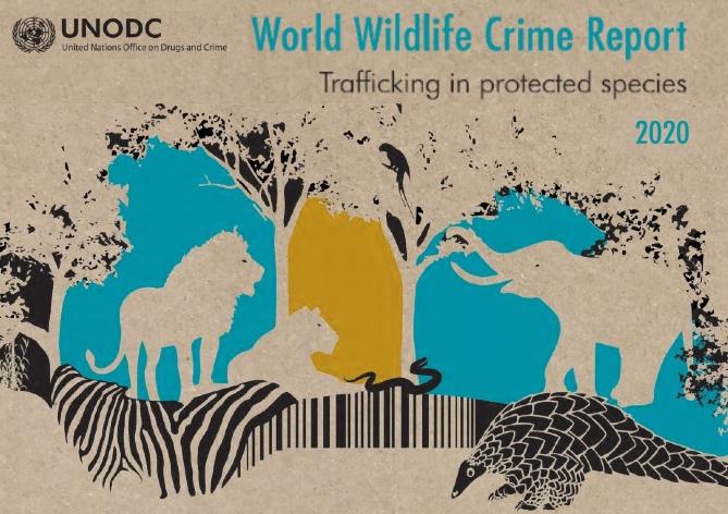 «World Wildlife Crime Report 2020» (ONUDC)