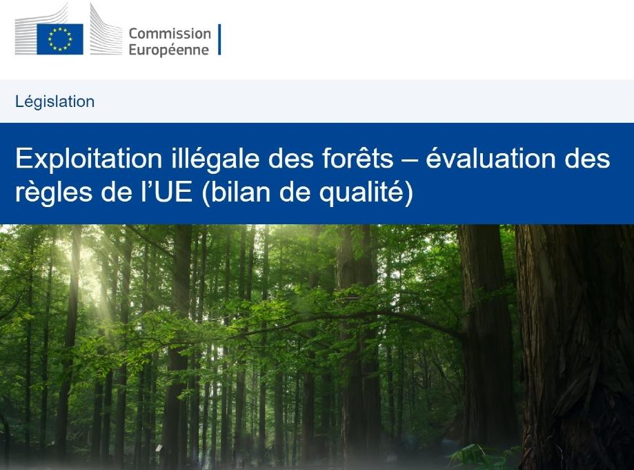 Consultation de la Commission Européenne sur le RBUE