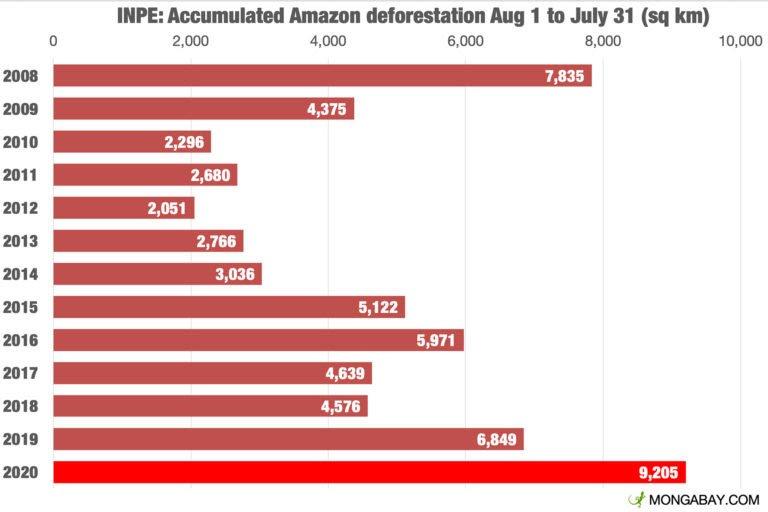 La déforestation continue au Brésil