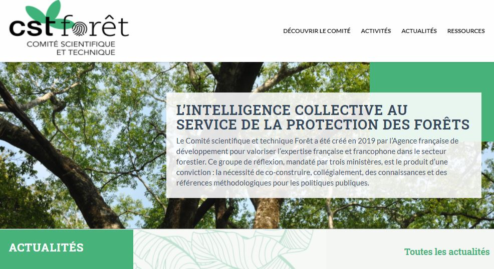 Le site internet du CST-Forêt est disponible