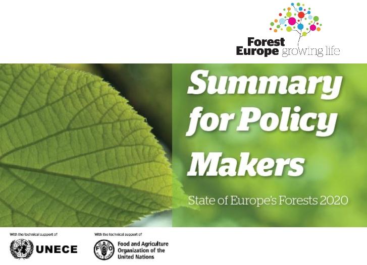L'état des forêts en Europe en 2020