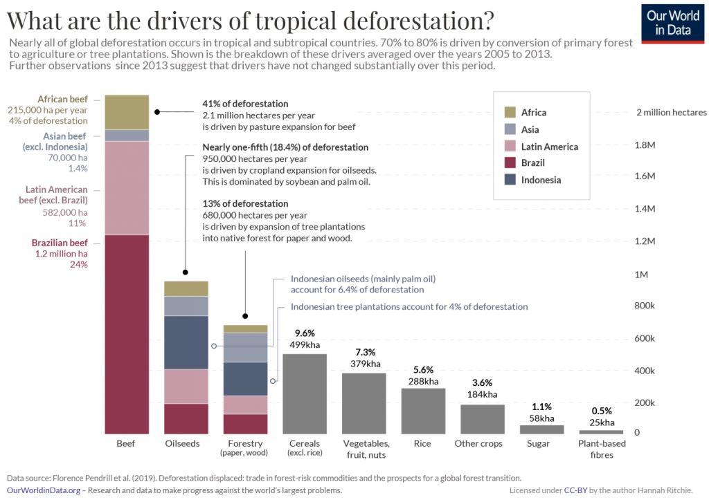Les moteurs de la déforestation