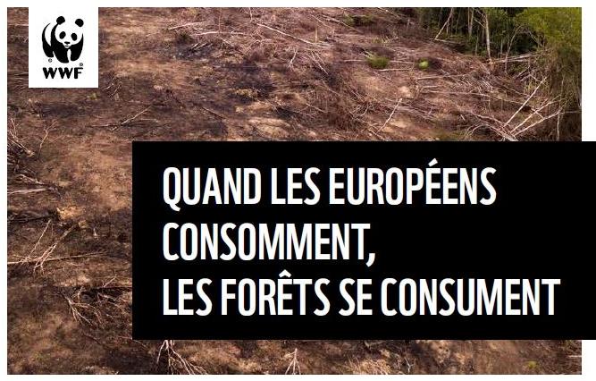 Rapport WWF sur la situation de la déforestation dans l'UE