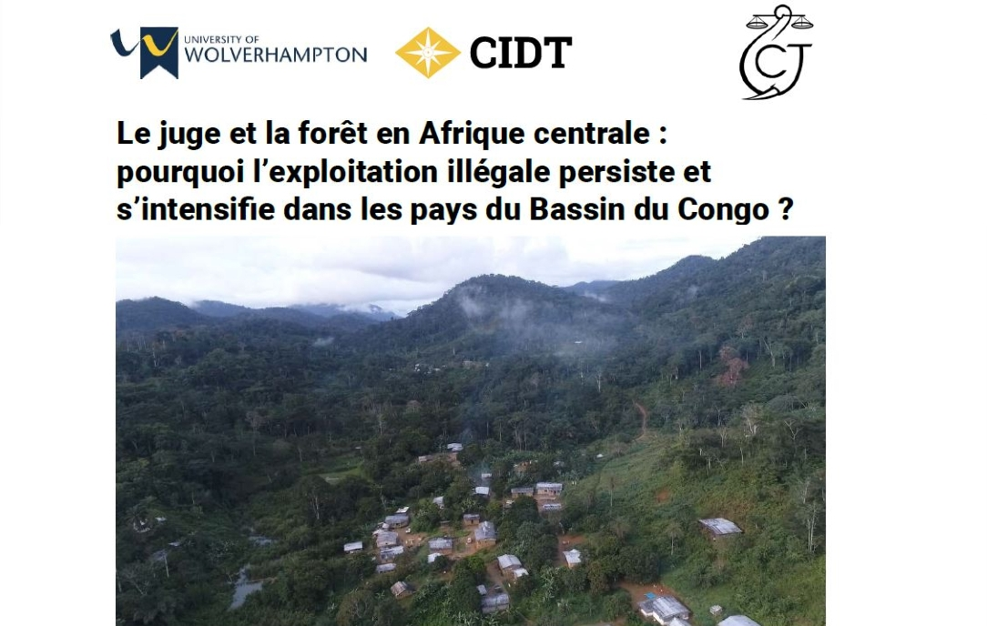 Point de vue sur l'exploitation illégale dans le Bassin du Congo