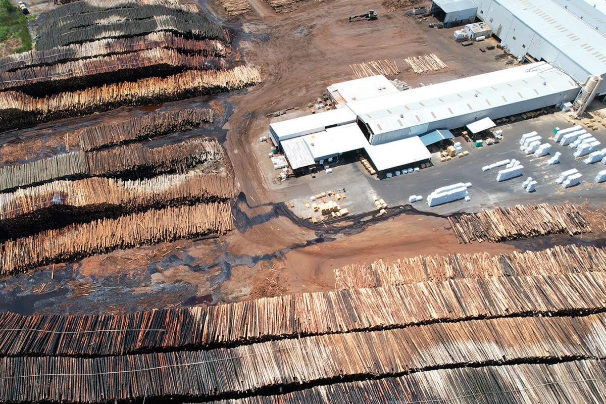 Etes-vous réellement engagé dans la traçabilité de vos produits bois ?