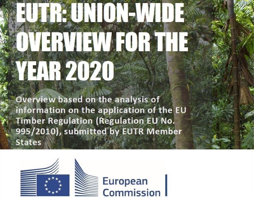 Résultats de l'application du RBUE par les États membres de l'UE en 2020